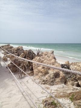 rocky dunes